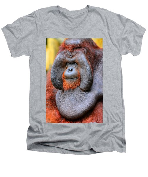Bornean Orangutan Iv Men's V-Neck T-Shirt by Lourry Legarde