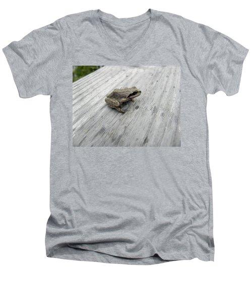 Botanical Gardens Tree Frog Men's V-Neck T-Shirt by Cheryl Hoyle