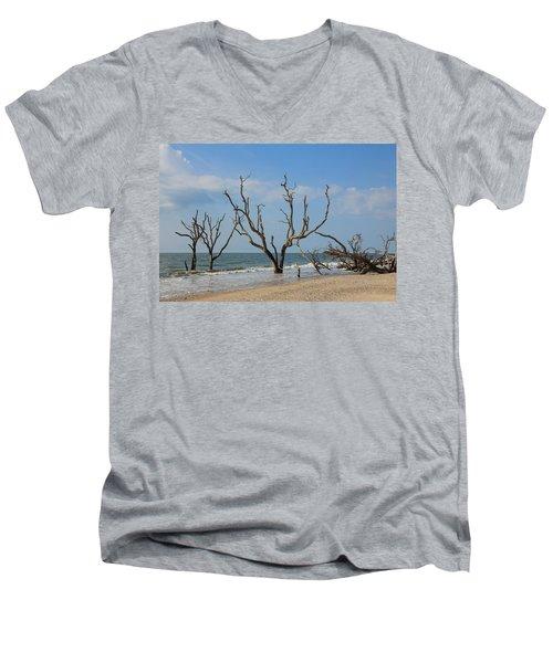 Botany Beach Men's V-Neck T-Shirt