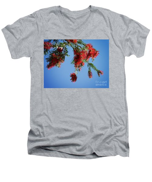 Bottle Brushing The Sky Men's V-Neck T-Shirt