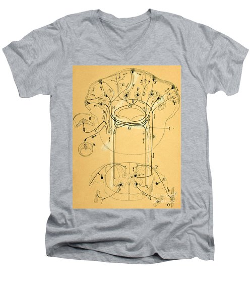 Brain Vestibular Sensor Connections By Cajal 1899 Men's V-Neck T-Shirt