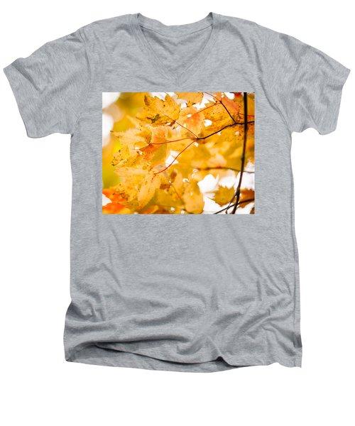 Branching Yellow Men's V-Neck T-Shirt by Melinda Ledsome
