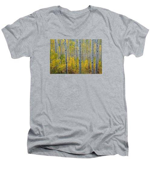 Brilliant Colors Of The Autumn Aspen Forest Men's V-Neck T-Shirt