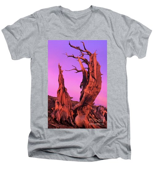 Men's V-Neck T-Shirt featuring the photograph Bristlecone Pine At Sunset White Mountains Californa by Dave Welling