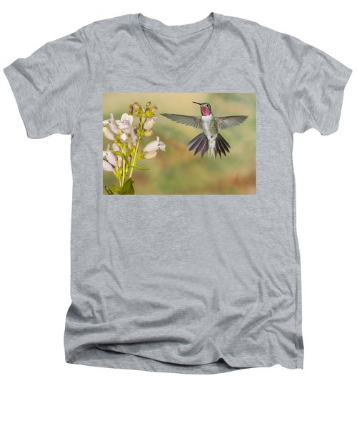 Broad Tailed Hummingbird 2 Men's V-Neck T-Shirt
