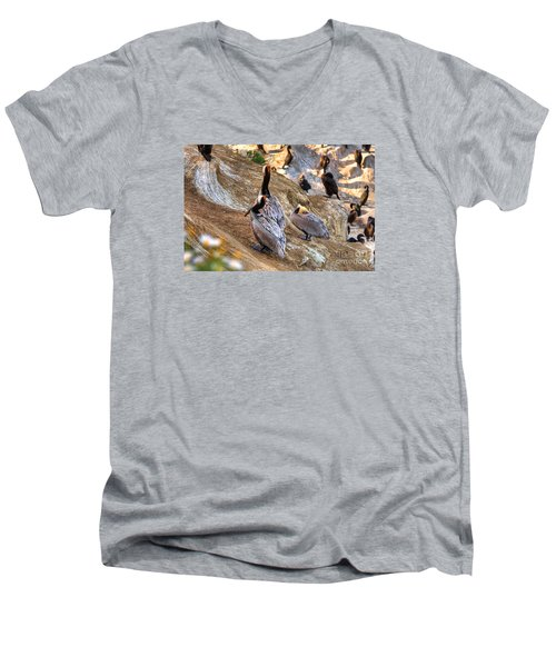 Brown Pelicans At Rest Men's V-Neck T-Shirt by Jim Carrell