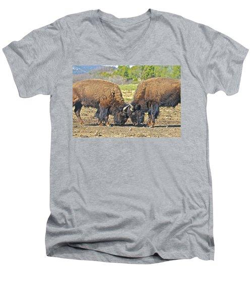 Buffaloes At Play Men's V-Neck T-Shirt
