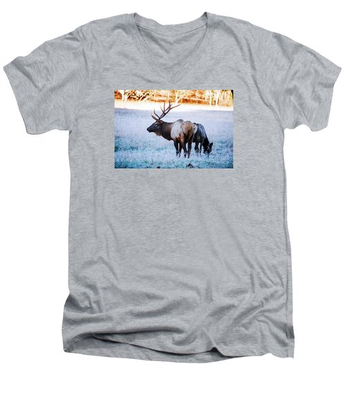 Men's V-Neck T-Shirt featuring the photograph Bull Elk And Cow by Paul Mashburn