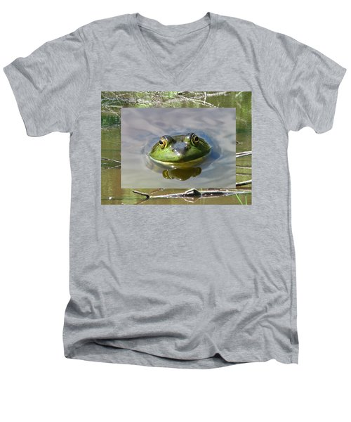Bull Frog And Pond Men's V-Neck T-Shirt