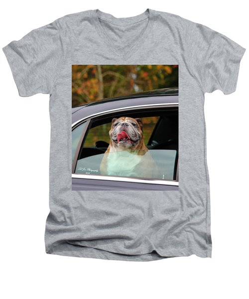 Bulldog Bliss Men's V-Neck T-Shirt by Jeanette C Landstrom