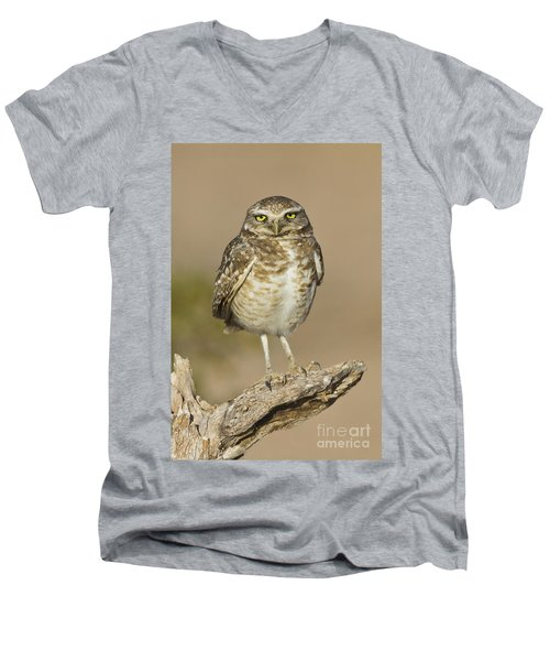 Men's V-Neck T-Shirt featuring the photograph Burrowing Owl by Bryan Keil