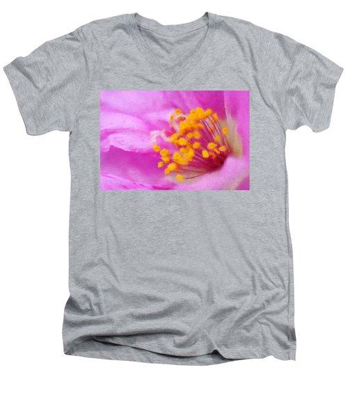 Buttercup Confection Men's V-Neck T-Shirt