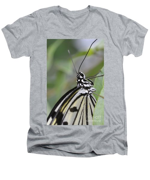 Butterfly Men's V-Neck T-Shirt