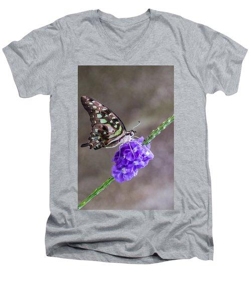 Butterfly - Tailed Jay I Men's V-Neck T-Shirt