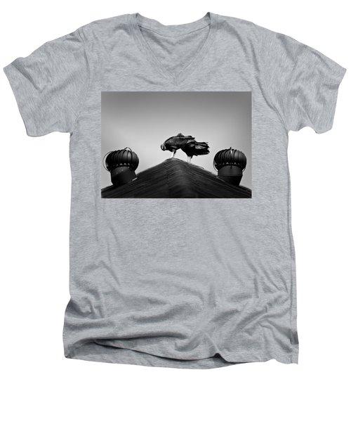 Buzzards 2 Men's V-Neck T-Shirt by Mark Alder