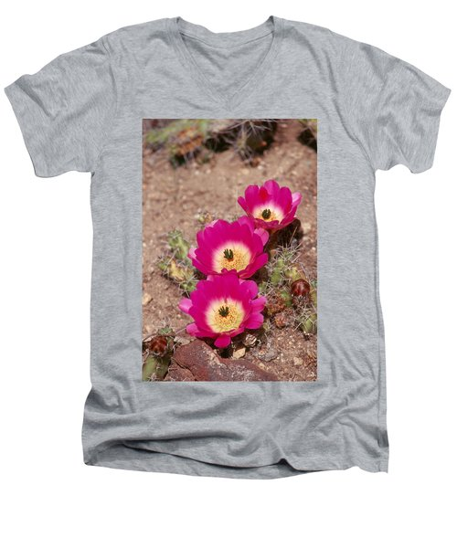 Cactus 1 Men's V-Neck T-Shirt