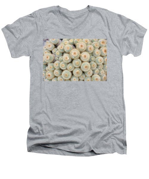 Cactus 35 Men's V-Neck T-Shirt