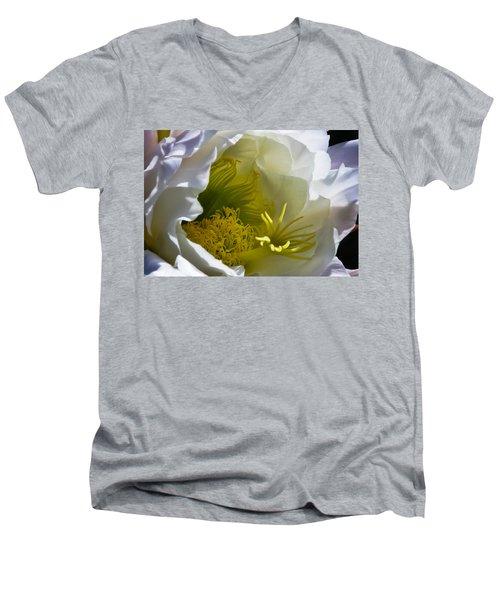 Cactus Interior Men's V-Neck T-Shirt