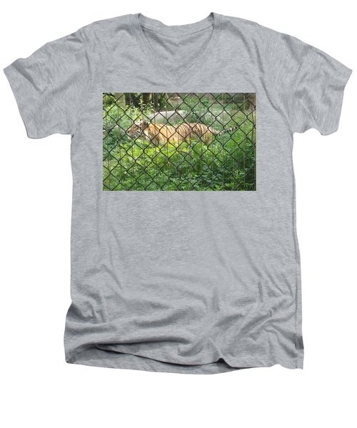 Men's V-Neck T-Shirt featuring the photograph Caged by Fortunate Findings Shirley Dickerson