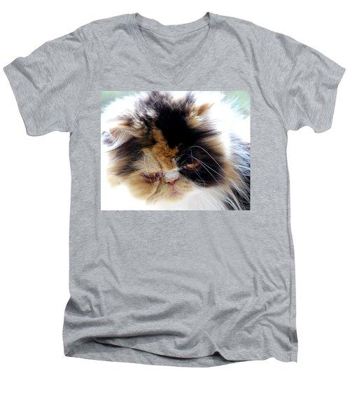 Cali The Dreamer Men's V-Neck T-Shirt