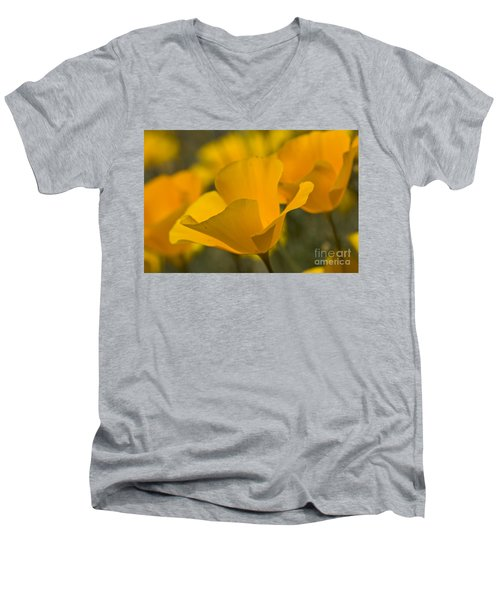 California Poppies Men's V-Neck T-Shirt by Bryan Keil