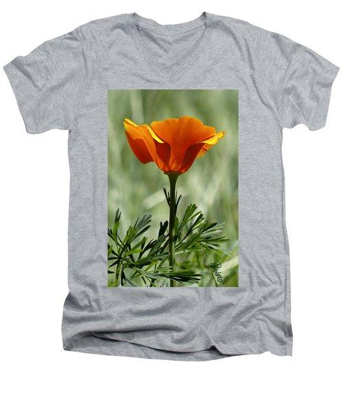 California Poppy Men's V-Neck T-Shirt