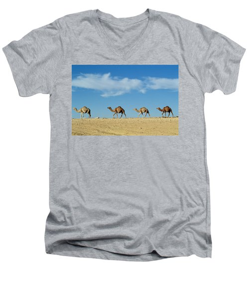 Camel Train Men's V-Neck T-Shirt
