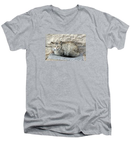 Camo Cat Men's V-Neck T-Shirt