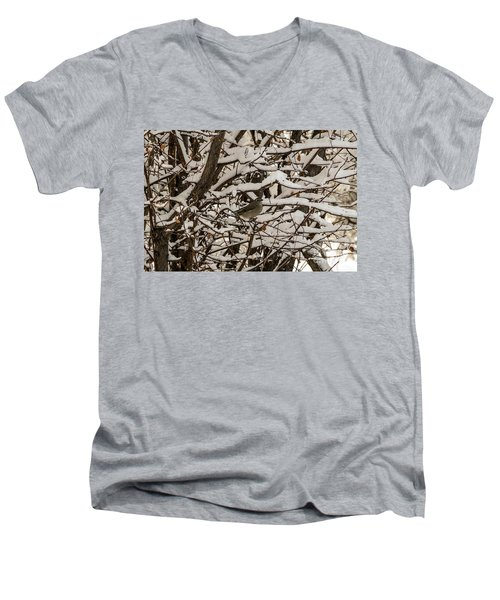 Camouflaged Thrush Men's V-Neck T-Shirt