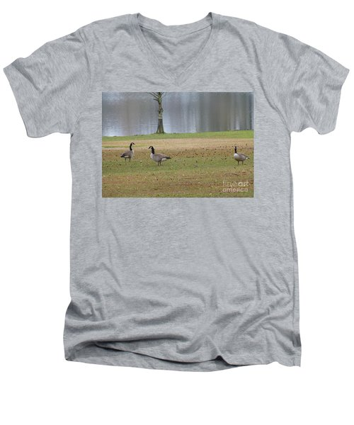 Canadian Geese Tourists Men's V-Neck T-Shirt by Joseph Baril
