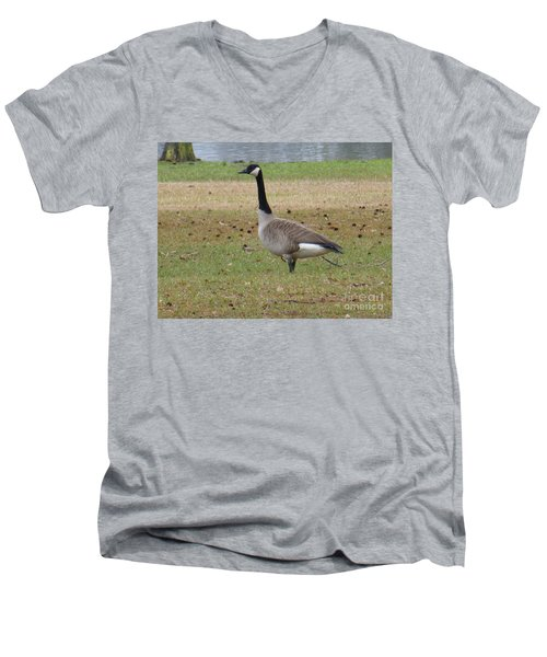 Canadian Goose Strut Men's V-Neck T-Shirt