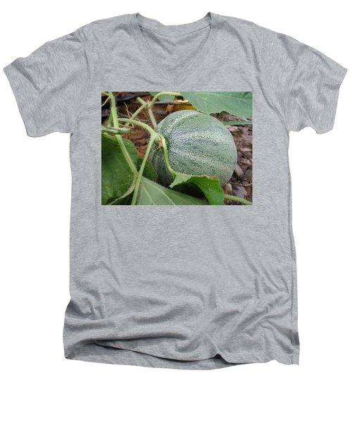 Cantaloupe  Men's V-Neck T-Shirt