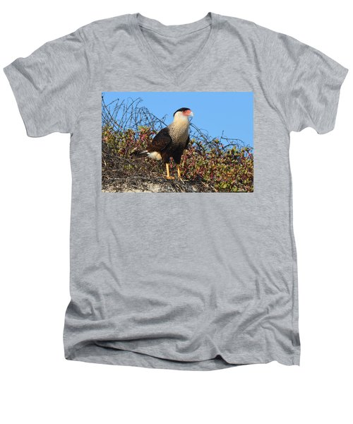 Caracara In The Dunes Men's V-Neck T-Shirt by Debra Martz
