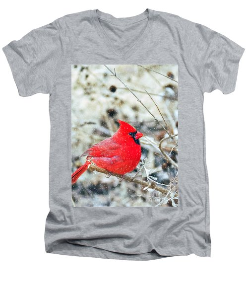Cardinal Bird Christmas Card Men's V-Neck T-Shirt
