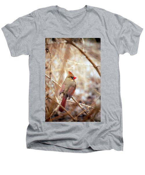 Cardinal Birds Female Men's V-Neck T-Shirt