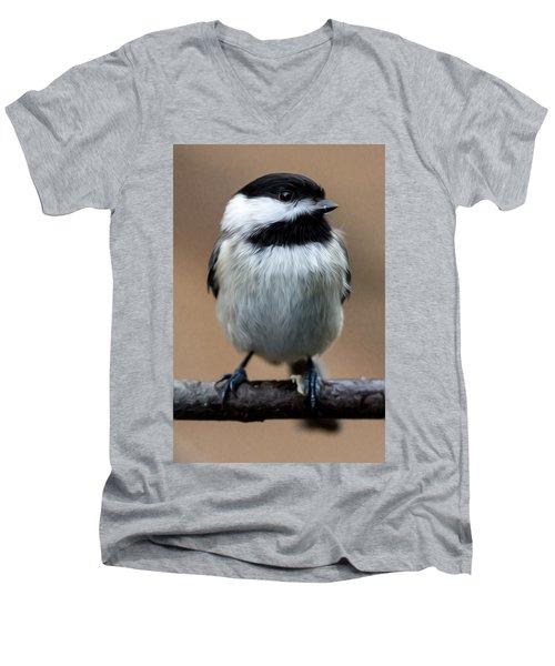 Men's V-Neck T-Shirt featuring the painting Carolina Chickadee by John Haldane