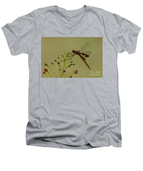 Carolina Saddlebags Men's V-Neck T-Shirt