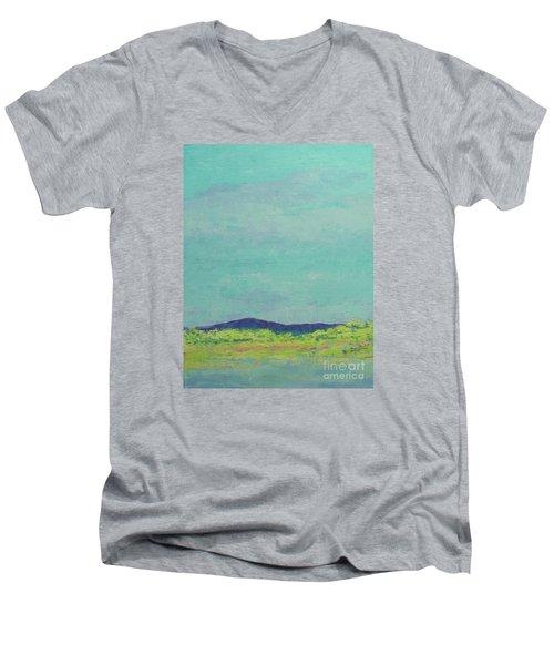 Carolina Spring Day Men's V-Neck T-Shirt by Gail Kent