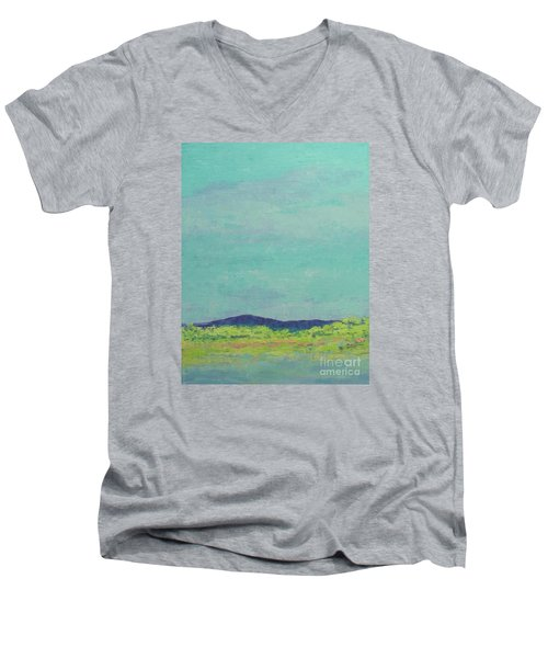 Carolina Spring Day Men's V-Neck T-Shirt
