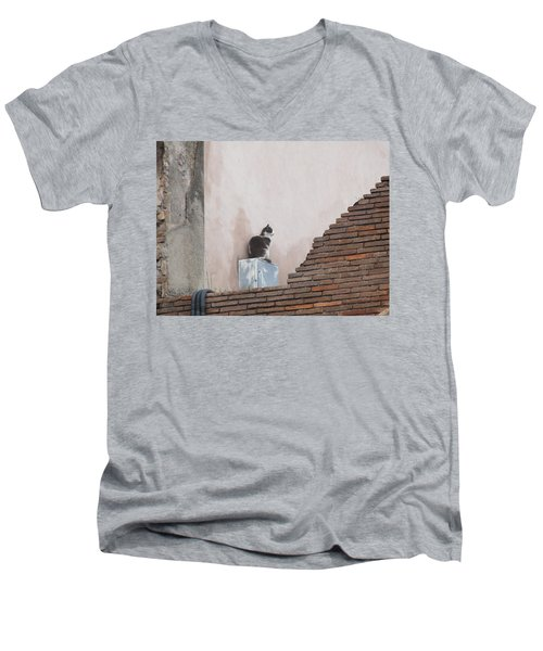 Men's V-Neck T-Shirt featuring the photograph Cat Above The Roman Ruins by Tiffany Erdman