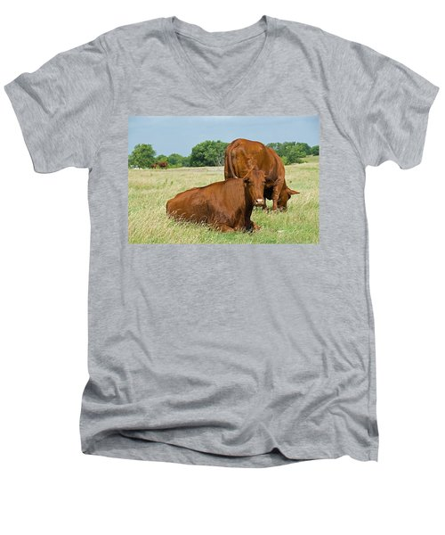 Men's V-Neck T-Shirt featuring the photograph Cattle Grazing In Field by Charles Beeler