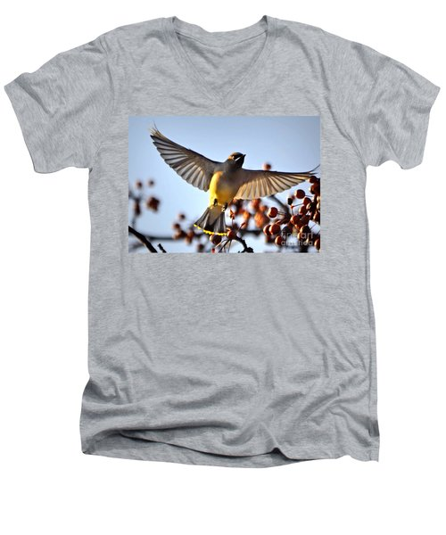 Cedar Waxwing Flight Men's V-Neck T-Shirt