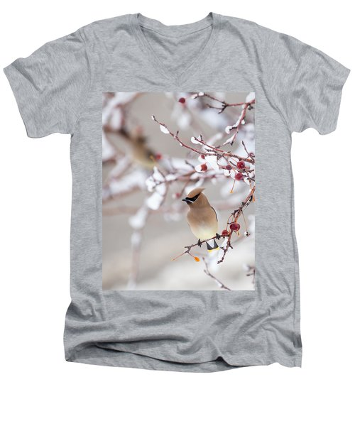 Cedar Waxwing Men's V-Neck T-Shirt