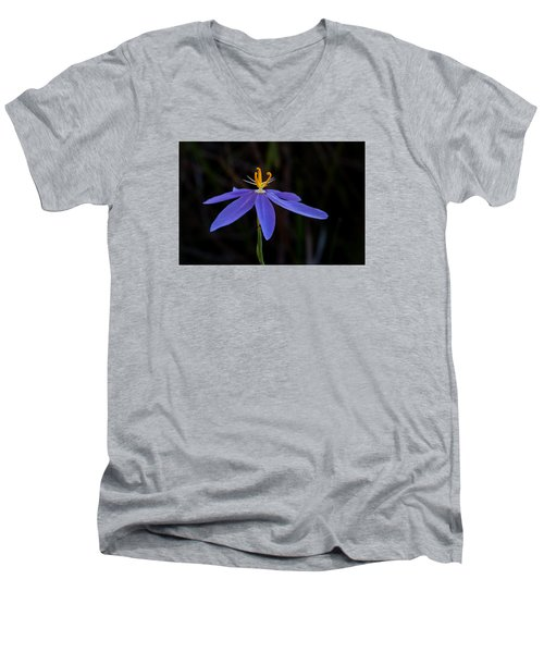 Celestial Lily Men's V-Neck T-Shirt