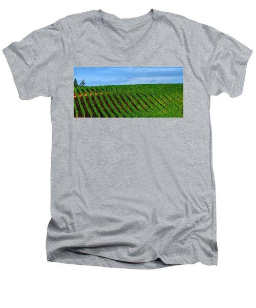 Chardonnay Sky 17990 Men's V-Neck T-Shirt by Jerry Sodorff