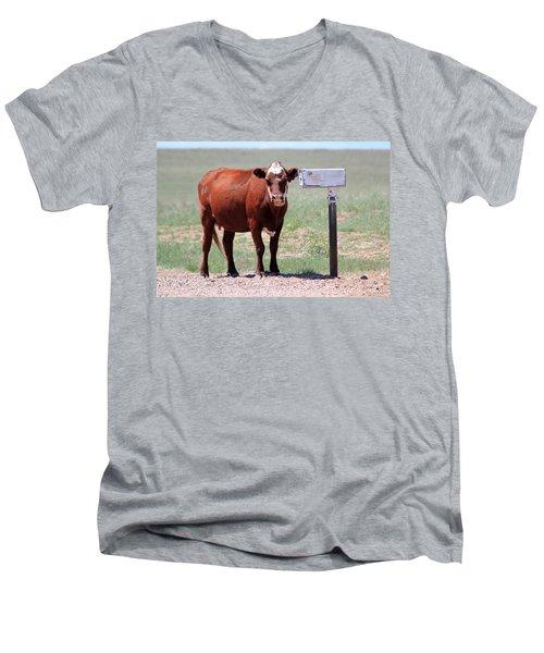 Checking The Mail Men's V-Neck T-Shirt