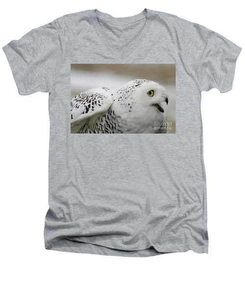 Cheeky Snow Owl Men's V-Neck T-Shirt