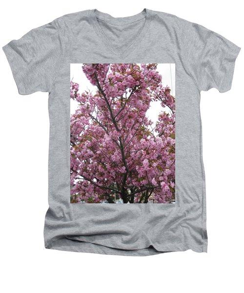 Cherry Blossoms 2 Men's V-Neck T-Shirt by David Trotter