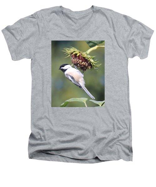 Chickadee On Sunflower Men's V-Neck T-Shirt by Lucinda VanVleck