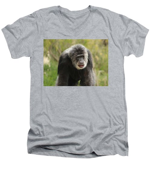 Chimpanzee Men's V-Neck T-Shirt